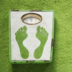 Vintage foot scale with green footprints against green carpet.